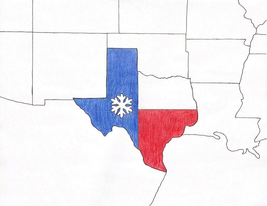 Texas Snow Graphic